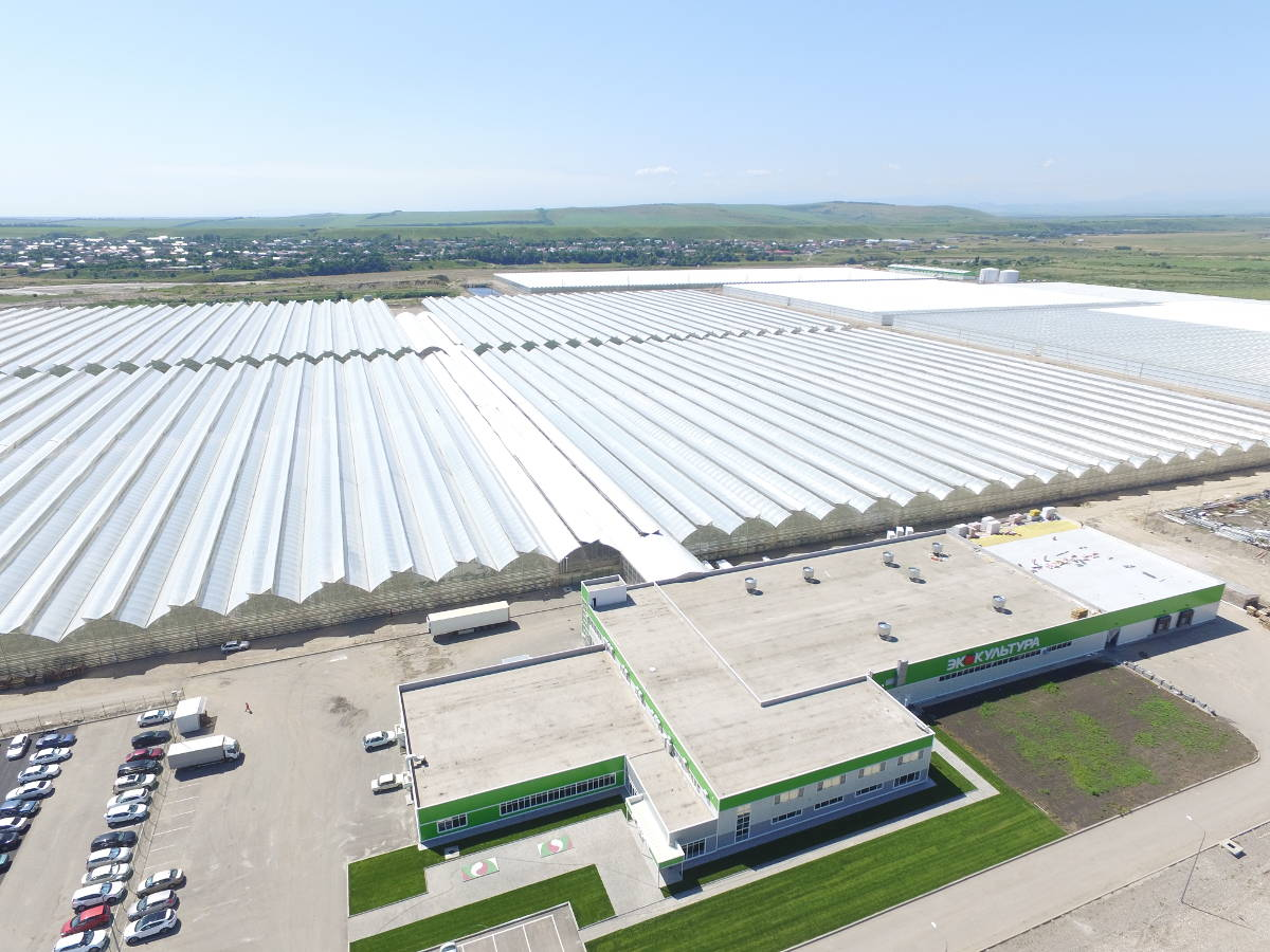 APH Eco-Culture entered Top-5 greenhouse projects in Southern Russia