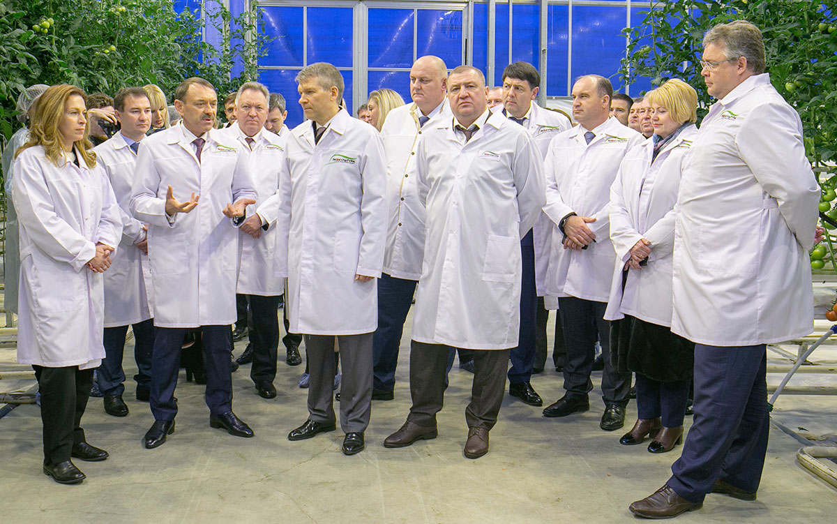 Investment in construction of APH ECO-Culture  greenhouse complex will exceed 15 billion rubles