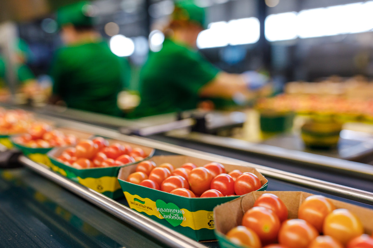 Vegetables or grains: how prices influence the taste preferences of people in Russia