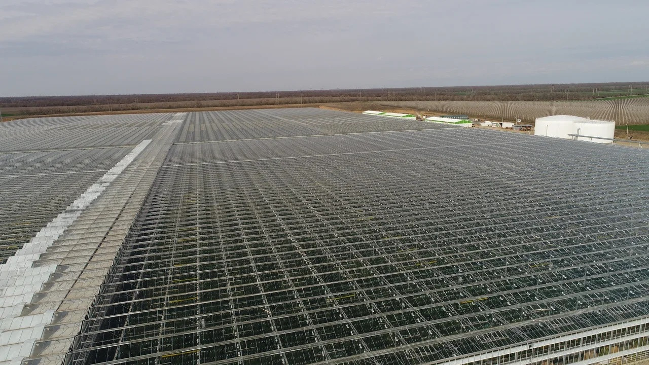 """The """"Solnechny dar"""" greenhouse complex brings more money to the Stavropol Krai treasury and plans to build a village with 50,000 square meters total area"""