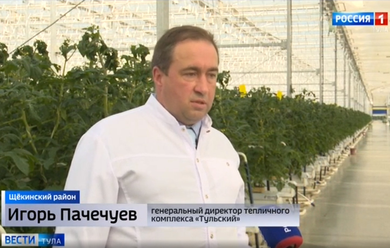 News from Tula – local greenhouse complex is being developed at a record pace