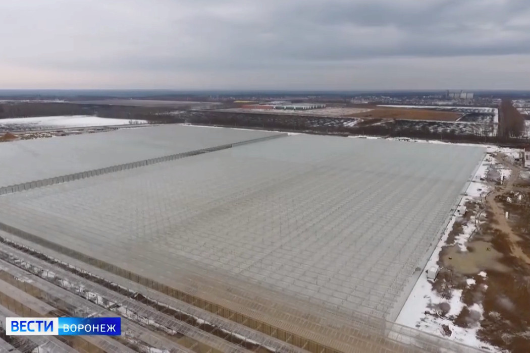ECO-Culture holding completes the construction of a new greenhouse complex near Voronezh
