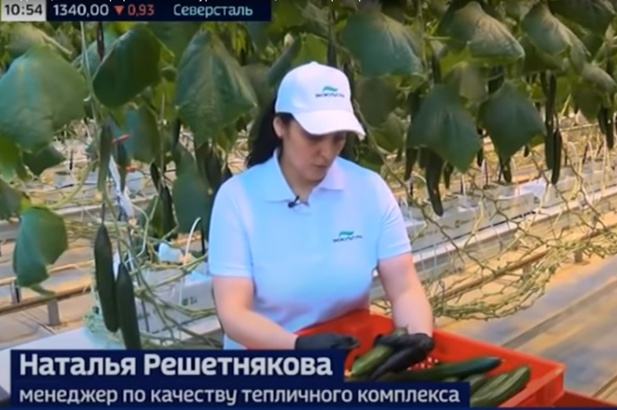 """Russia 24 channel broadcasts a story featuring """"Krugly God"""" greenhouse complex"""
