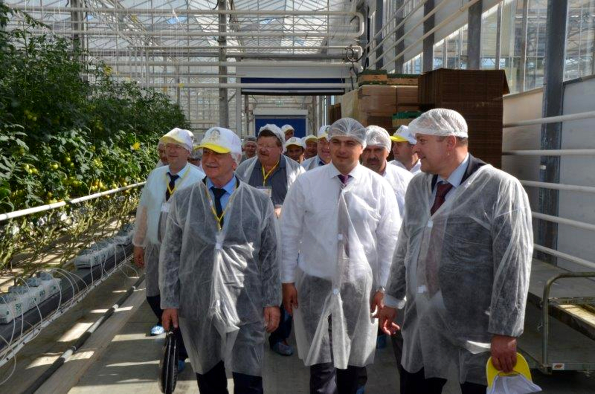 """Rosselkhoztsentr experts pay a visit to """"Solnechny Dar"""" greenhouse complex"""