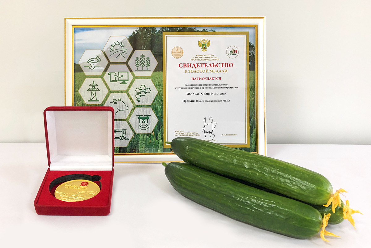ECO-Culture's cucumbers win a gold medal of the AGRORUS-2021 exhibition